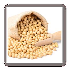 豆類充填封口機